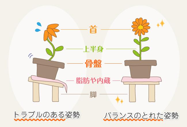 kotsuban6